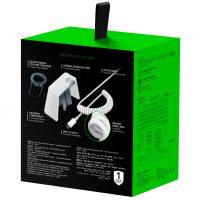 Package PBT_0003_PBT Keycap   CoiledCable White [2021] Back 3D box